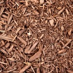 What is Acid Mulch and What Causes it?