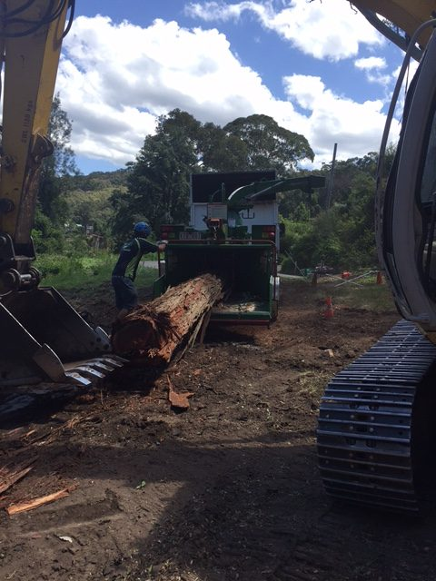 Land Clearing Central Coast