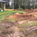 Large tree stump grinding